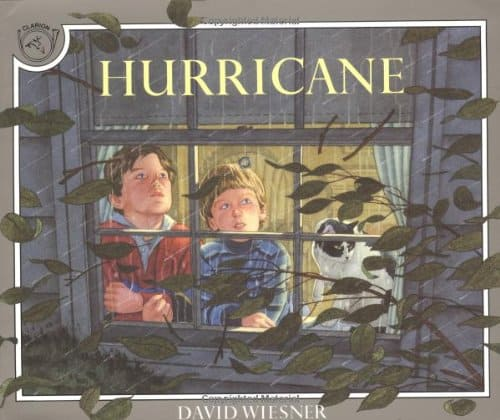 10 Picture Books to Reassure Kids About Storms, thunder, lightning, and even hurricanes.