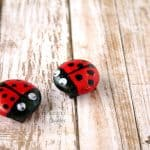 Read a Story, Make a Mother-Daughter Ladybug Craft