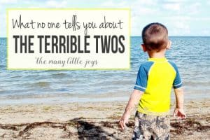 What-No-One-Tells-You-About-the-Terrible-Twos-1