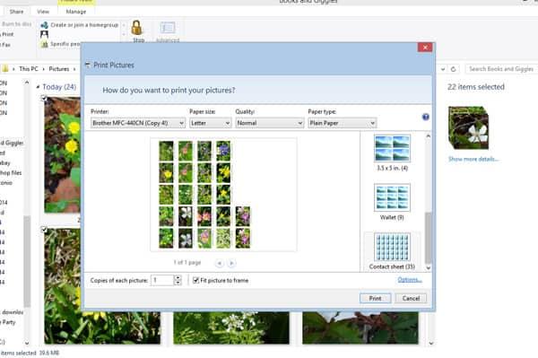 wildflower-kids-photos-screenshot