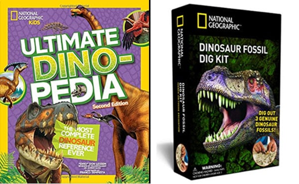 book-toy-combo-dinosaurs