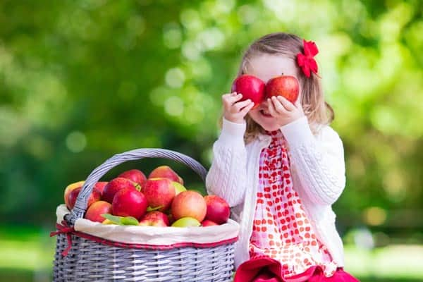 preschooler holding apples and sitting next to a basket of apples