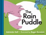 The Rain Puddle cover