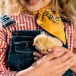 12 Fun Farm Activities for Your Classroom