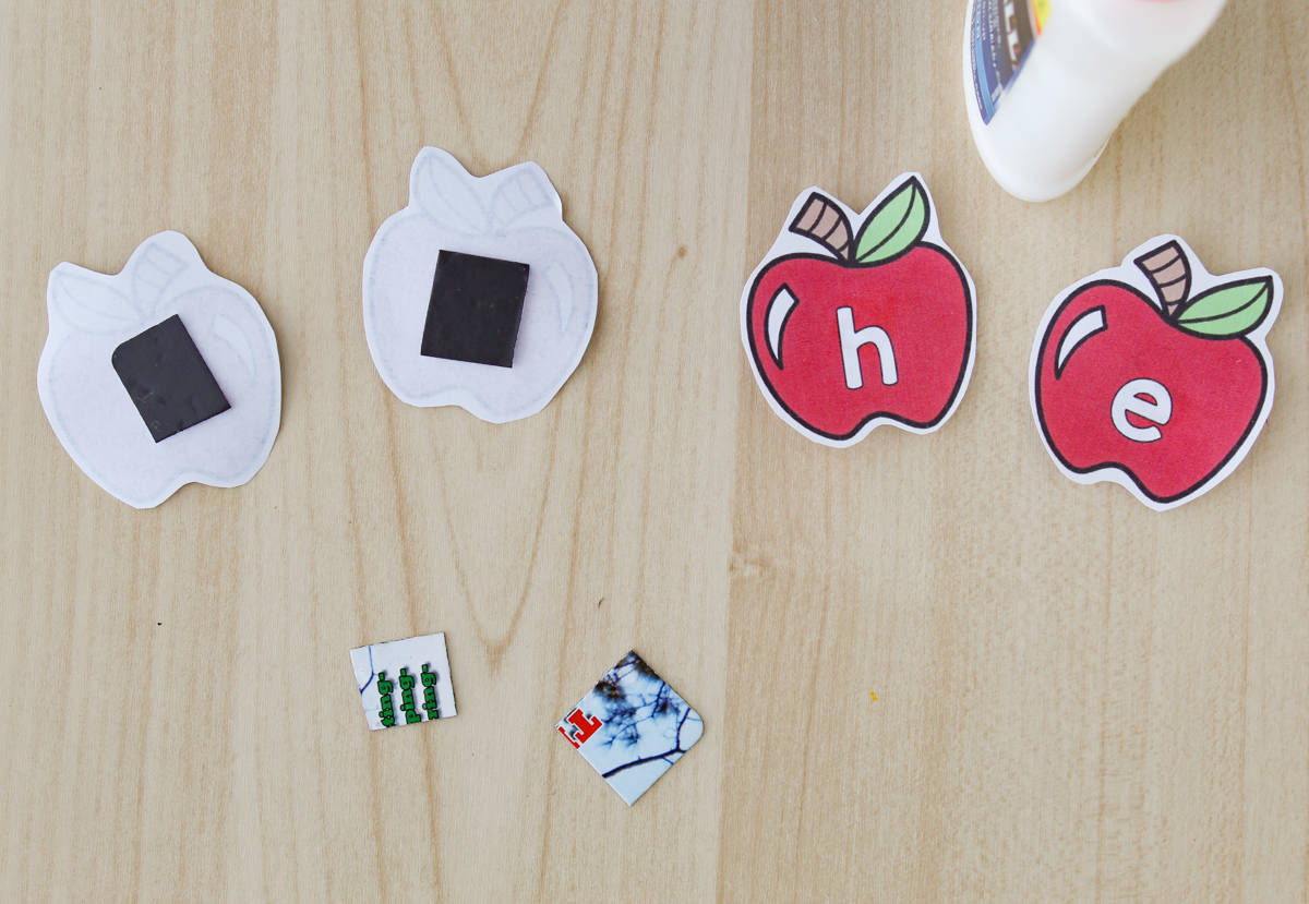 Glue bottle and paper apples with magnets being glued to the back of htem