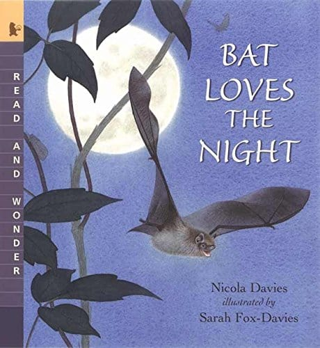 Bat Loves the Night book cover