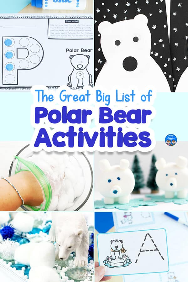 collage of polar bear activities